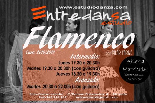 cartel clases flamenco